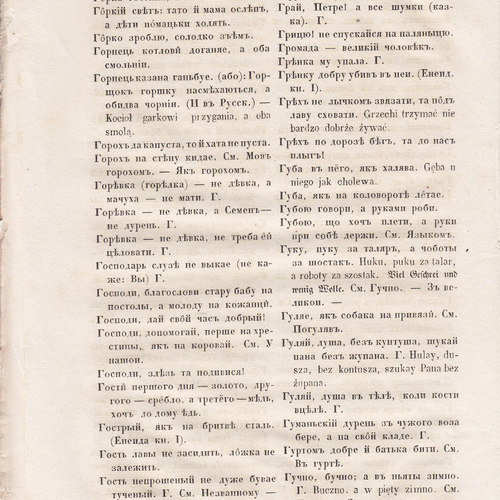 Starosvitsjkyj Bandurysta (160).jpg