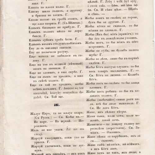 Starosvitsjkyj Bandurysta (168).jpg