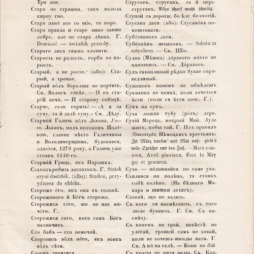 Starosvitsjkyj Bandurysta (213).jpg